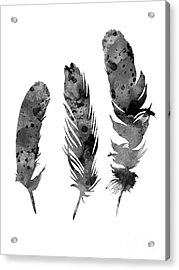 Gray Feathers Watercolor Art Print Painting Acrylic Print