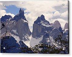 Gray Glacier Chile Acrylic Print by Charles  Ridgway