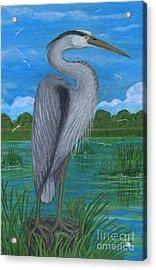 Gray Heron Acrylic Print by Anna Folkartanna Maciejewska-Dyba