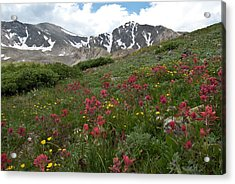 Acrylic Print featuring the photograph Gray's And Torreys by Cascade Colors