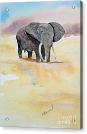Acrylic Print featuring the painting Great African Elephant  by Vicki  Housel
