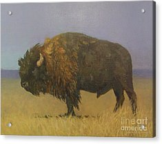 Great American Bison Acrylic Print