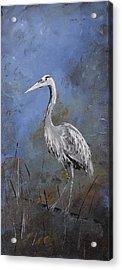 Great Blue Heron In Blue Acrylic Print by Carolyn Doe