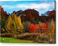 Great Brook Farm Autumn Acrylic Print