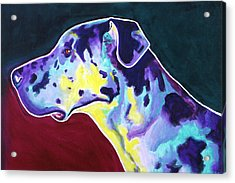 Great Dane - Boz Acrylic Print by Alicia VanNoy Call