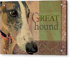 Great Greyhound Acrylic Print by Wendy Presseisen