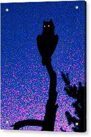 Great Horned Owl In The Desert Acrylic Print
