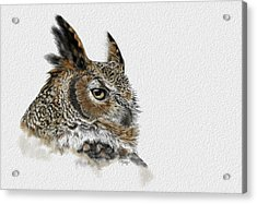 Great Horned Owl Acrylic Print by Kathie Miller
