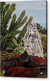 Great Horned Owl - Owl On The Rocks Acrylic Print by Marilyn  McNish