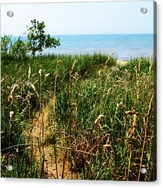 Acrylic Print featuring the photograph Great Lake Beach Path by Michelle Calkins