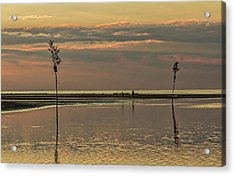 Great Moments Together Acrylic Print by Patrice Zinck