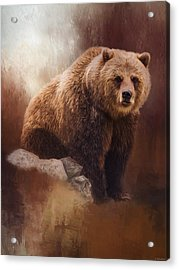 Great Strength - Grizzly Bear Art Acrylic Print