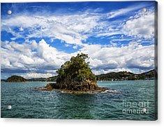 Great Vista Acrylic Print by Rick Bragan