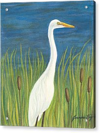 Great White Egret By Pond Acrylic Print by Jeanne Kay Juhos