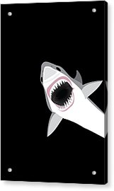 Great White Shark Acrylic Print by Antique Images