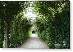 Green Arbor Of Mirabell Garden Acrylic Print by Carol Groenen