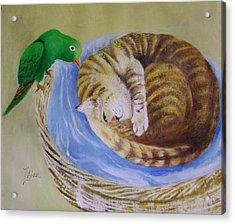 Green Bird Acrylic Print by Lian Zhen