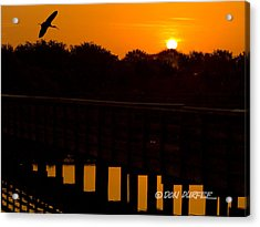 Acrylic Print featuring the photograph Green Cay Sunrise by Don Durfee