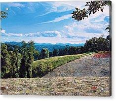 Green Country Acrylic Print by Joshua Martin