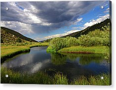 Green Creek By Frank Hawkins Acrylic Print