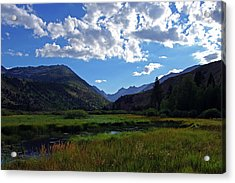 Green Creek Meadow 2 Acrylic Print
