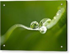 Green Crystal Acrylic Print