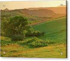 Green Dakota Dream Acrylic Print