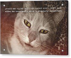 Green Eyed Glare Quote Acrylic Print by JAMART Photography