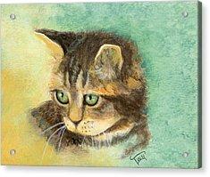 Green Eyes Acrylic Print by Terry Webb Harshman