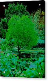Green Fantasy Acrylic Print by Etha  Walters