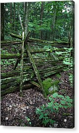 Green Fence Acrylic Print by Pat Purdy