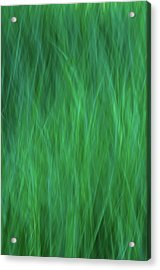 Green Fire 2 Acrylic Print