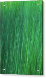 Green Fire 6 Acrylic Print