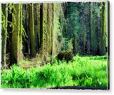 Green Forest Acrylic Print by Michael Cleere