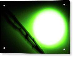 Green Goblin Acrylic Print
