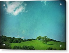 Green Grass Blue Sky Acrylic Print by Laurie Search