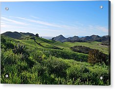 Acrylic Print featuring the photograph Green Hills Landscape With Cactus by Matt Harang