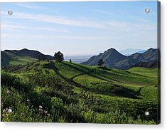 Acrylic Print featuring the photograph Green Hills Purple Flowers Foreground  by Matt Harang