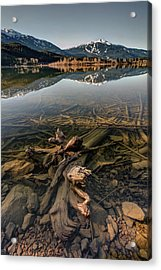 Acrylic Print featuring the photograph Green Lake Ironwood by Pierre Leclerc Photography