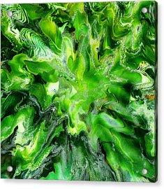 Green Leaf Acrylic Print by Paul Tokarski