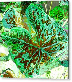 Acrylic Print featuring the photograph Green Leafmania 2 by Marianne Dow