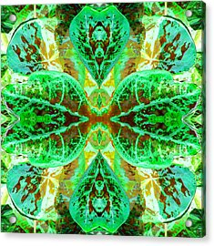 Acrylic Print featuring the photograph Green Leafmania 3 by Marianne Dow