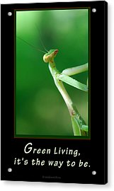 Green Living Acrylic Print