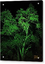 Acrylic Print featuring the digital art Green Magic by Doug Kreuger