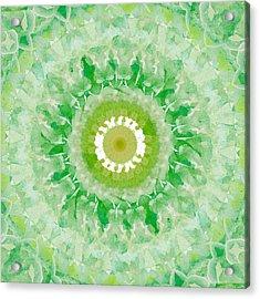 Green Mandala- Abstract Art By Linda Woods Acrylic Print by Linda Woods