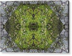 Green Mandala Acrylic Print by Viktor Savchenko