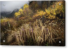Green Mountain Dawn Acrylic Print