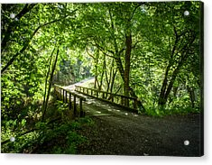Green Nature Bridge Acrylic Print