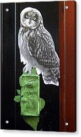 Green Owl Acrylic Print by Jez C Self