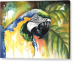 Acrylic Print featuring the mixed media Green Parrot by Anthony Burks Sr